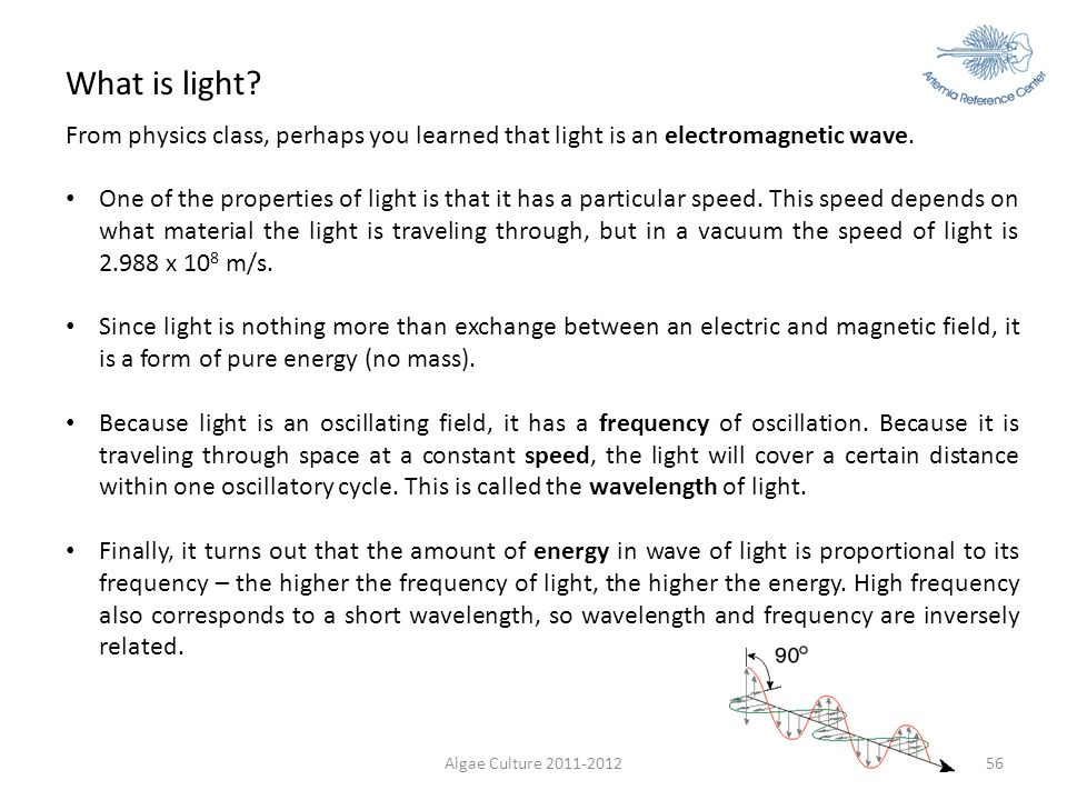 What is light From physics class, perhaps you learned that light is an electromagnetic wave.