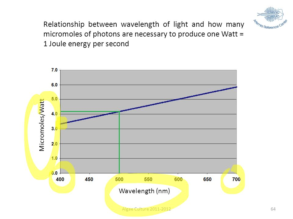 Relationship between wavelength of light and how many micromoles of photons are necessary to produce one Watt = 1 Joule energy per second