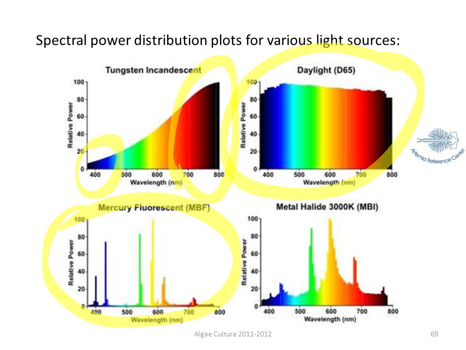 Spectral power distribution plots for various light sources: