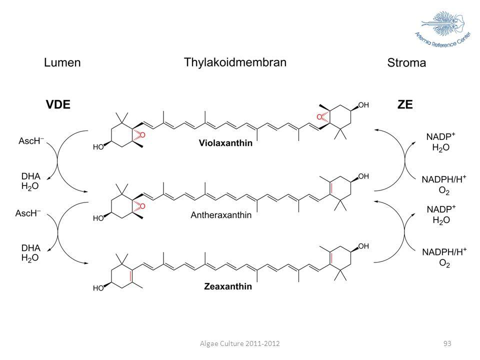 Dha:Dehydroxyascorbinezuur (Engels:DHA)