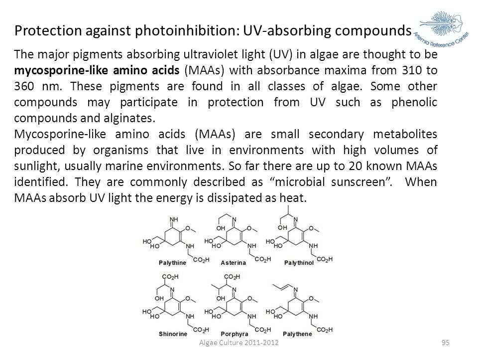 Protection against photoinhibition: UV-absorbing compounds