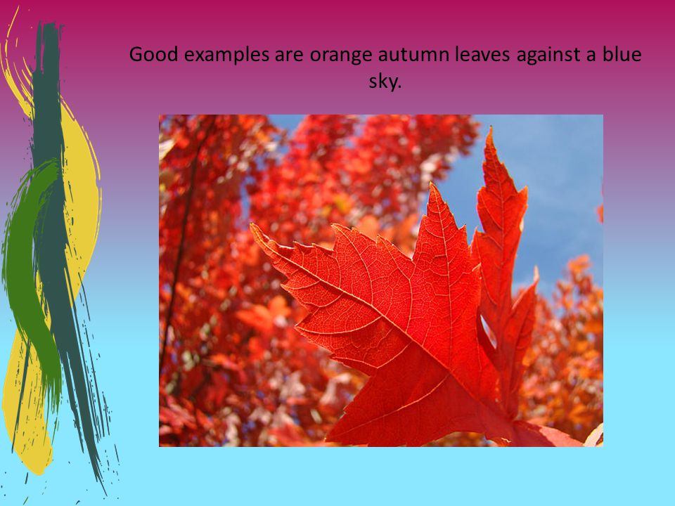 Good examples are orange autumn leaves against a blue sky.