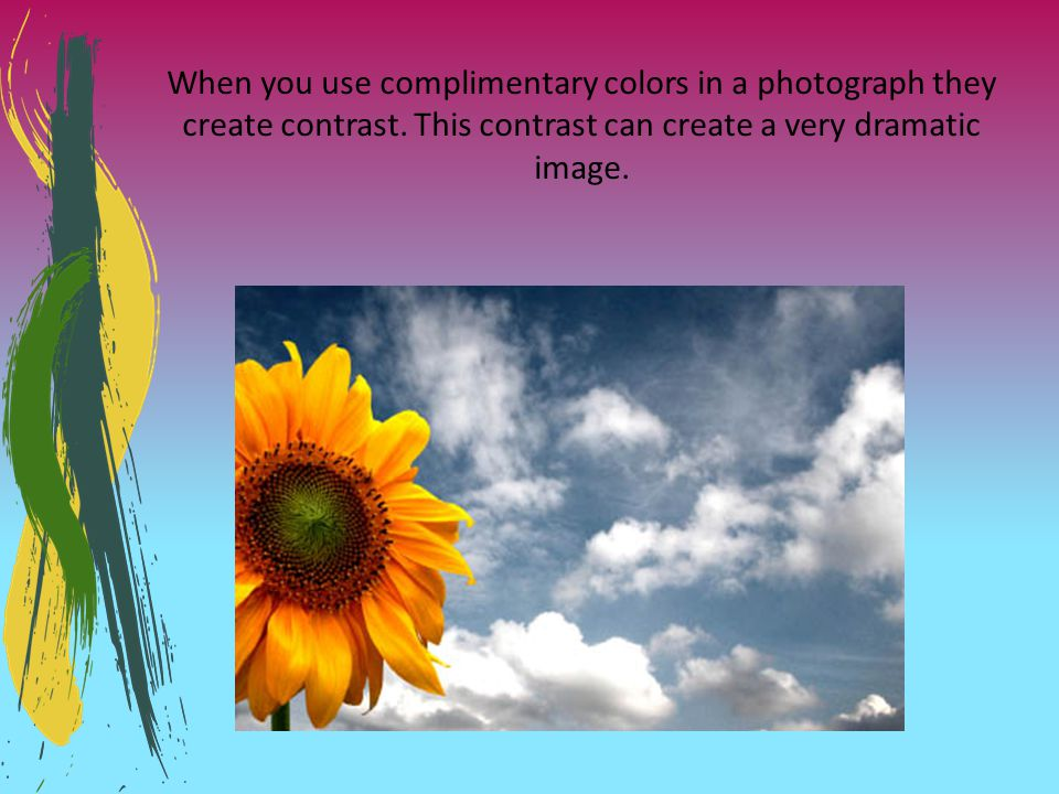When you use complimentary colors in a photograph they create contrast