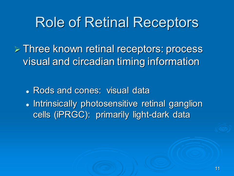 Role of Retinal Receptors