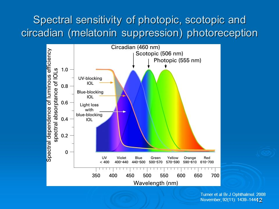 Spectral sensitivity of photopic, scotopic and circadian (melatonin suppression) photoreception