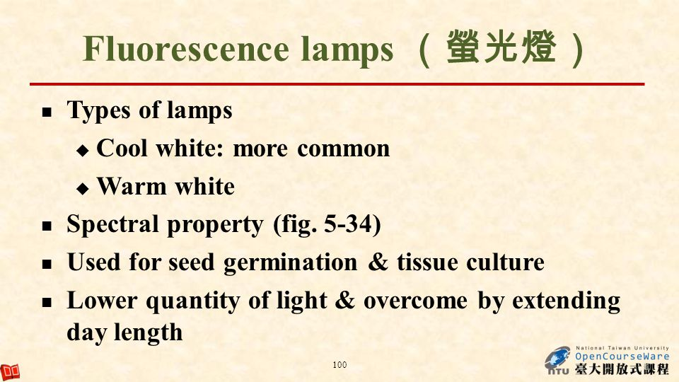 Fluorescence lamps (螢光燈)