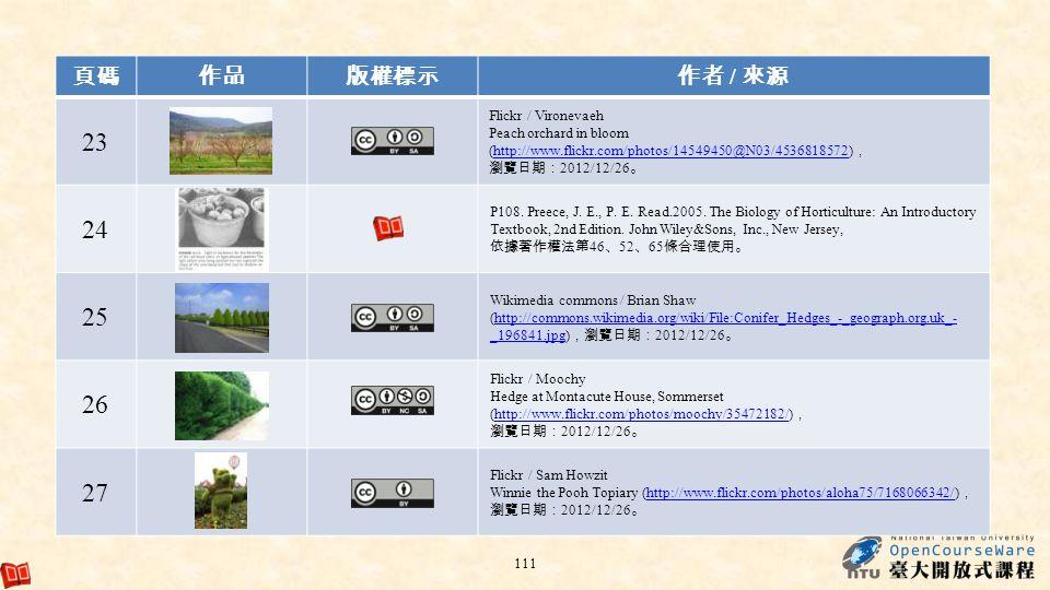 23 24 25 26 27 頁碼 作品 版權標示 作者 / 來源 Flickr / Vironevaeh