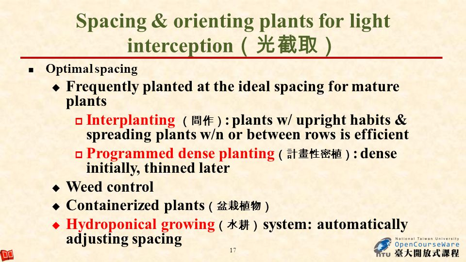 Spacing & orienting plants for light interception(光截取)