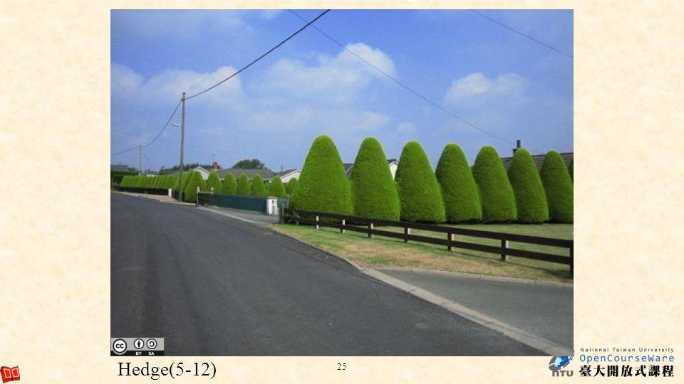 Hedge(5-12)