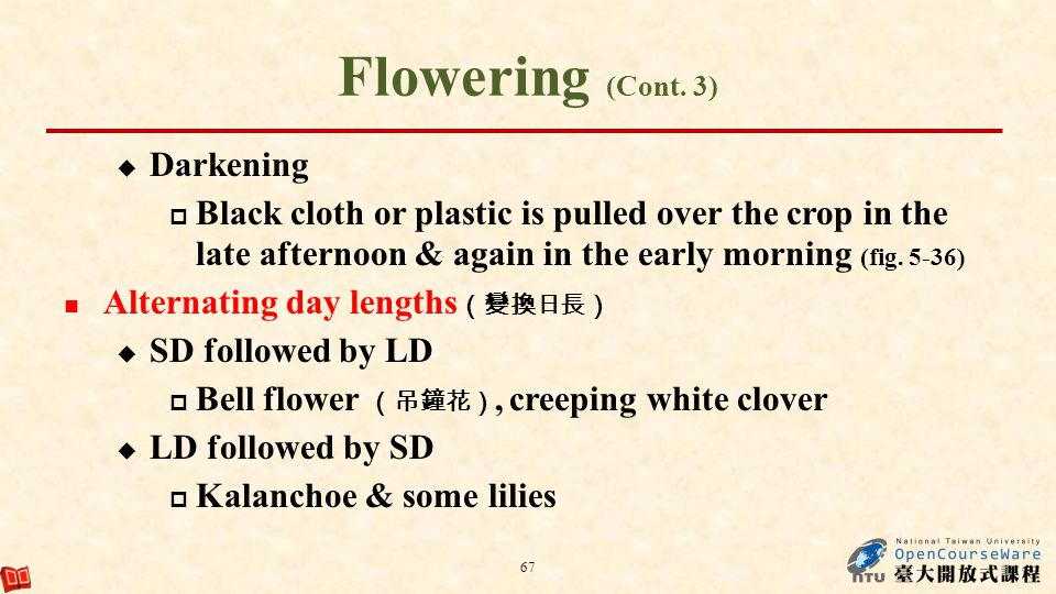 Flowering (Cont. 3) Darkening