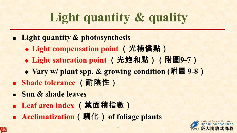 Light quantity & quality