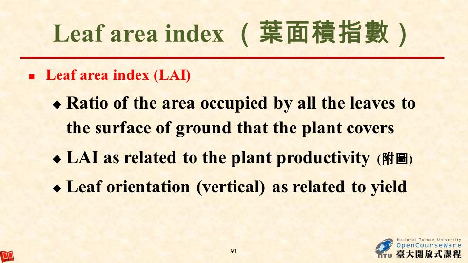 Leaf area index (葉面積指數)