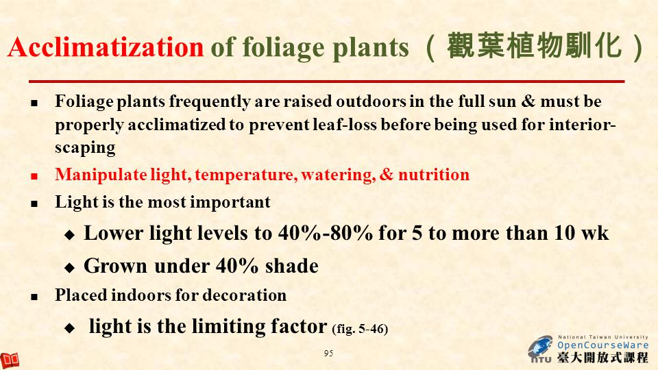 Acclimatization of foliage plants (觀葉植物馴化)