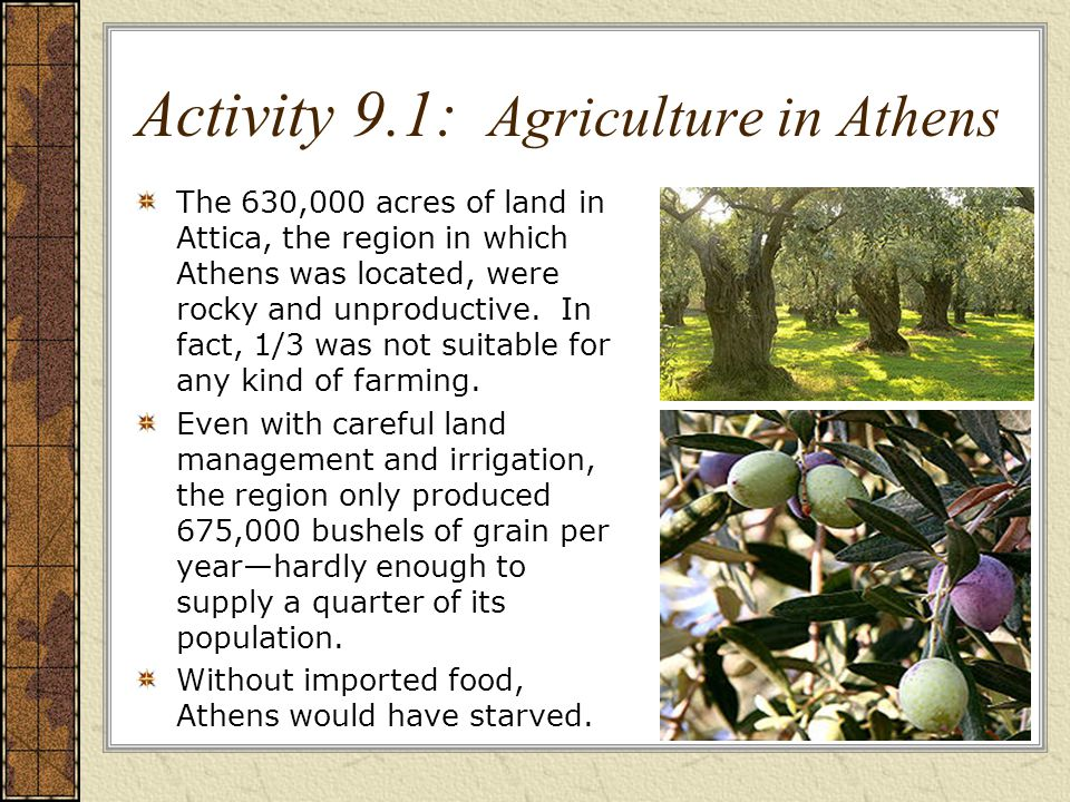 Activity 9.1: Agriculture in Athens