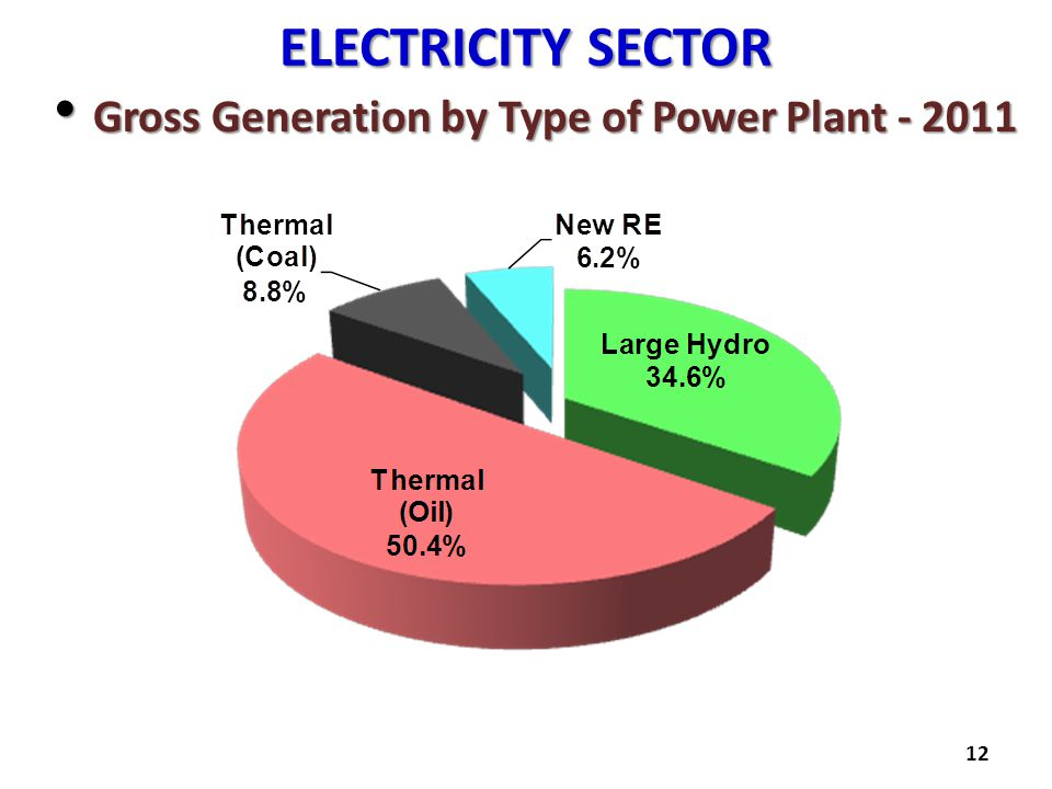 ELECTRICITY SECTOR Gross Generation by Type of Power Plant - 2011