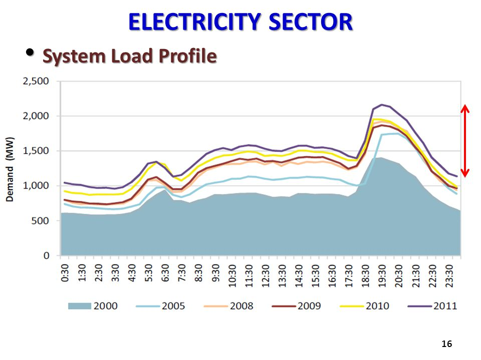 ELECTRICITY SECTOR System Load Profile