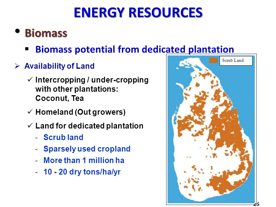 ENERGY RESOURCES Biomass Biomass potential from dedicated plantation