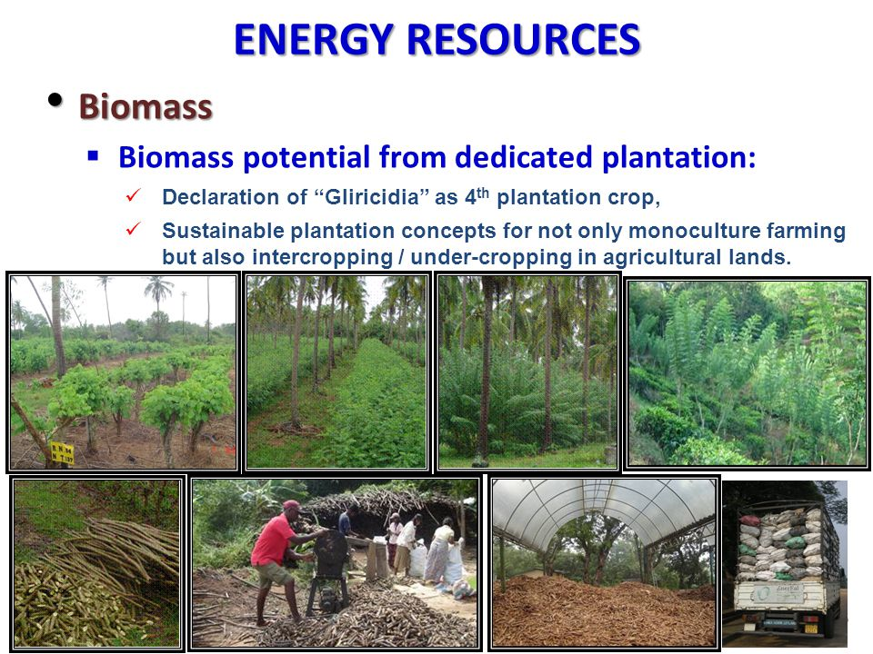 ENERGY RESOURCES Biomass Biomass potential from dedicated plantation: