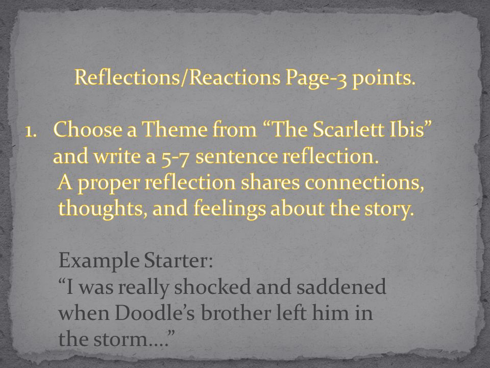 Reflections/Reactions Page-3 points.