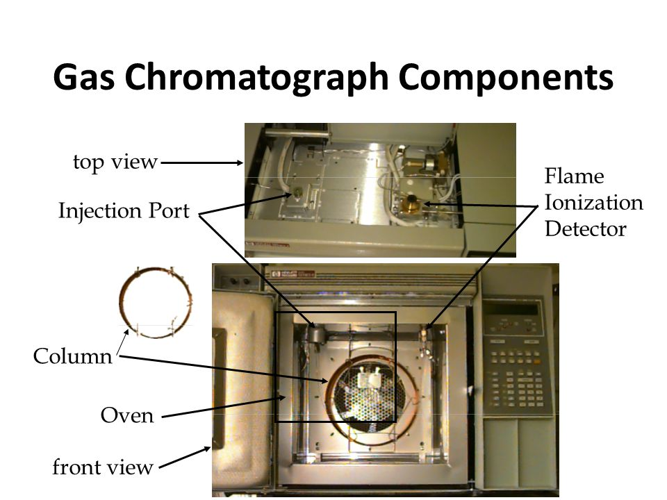 Gas Chromatograph Components