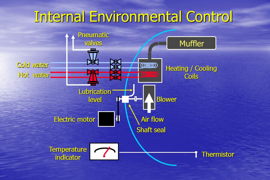 Internal Environmental Control