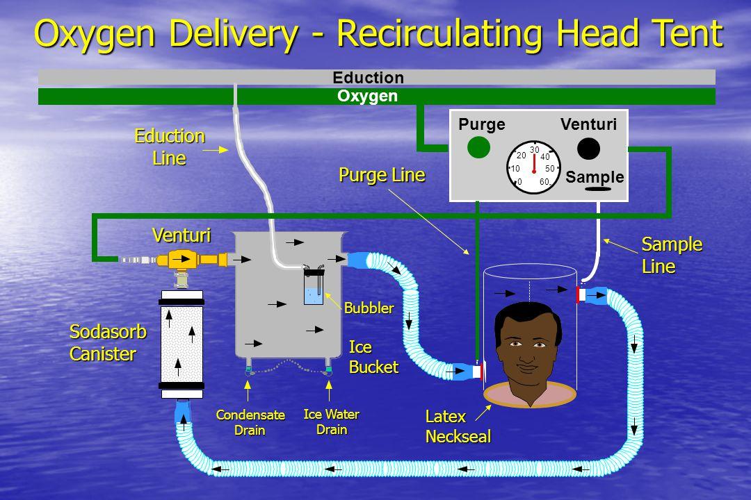 Oxygen Delivery - Recirculating Head Tent