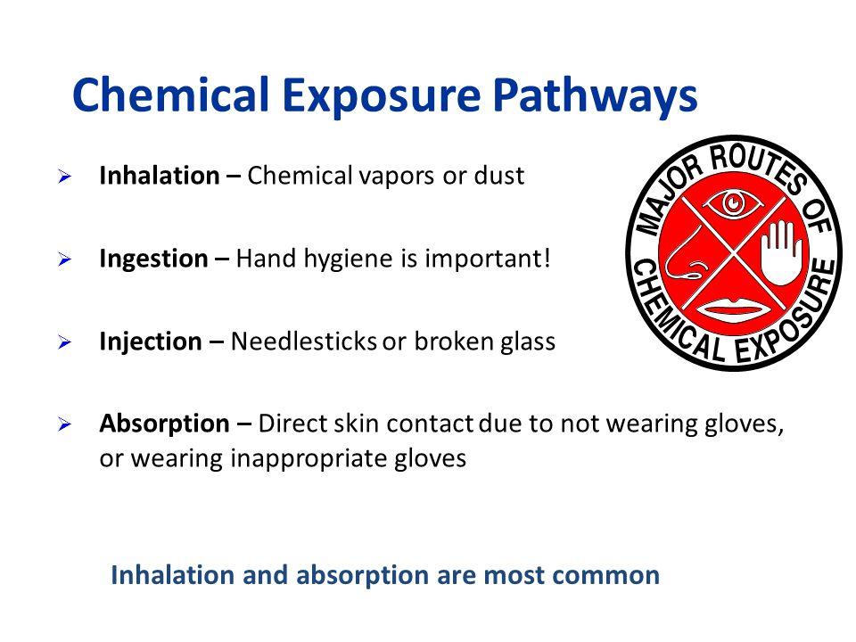 Chemical Exposure Pathways