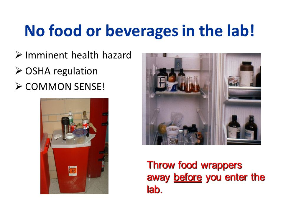 No food or beverages in the lab!