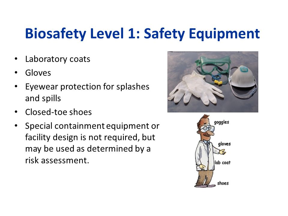 Biosafety Level 1: Safety Equipment