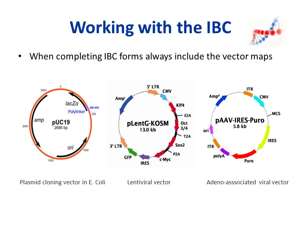Working with the IBC When completing IBC forms always include the vector maps.