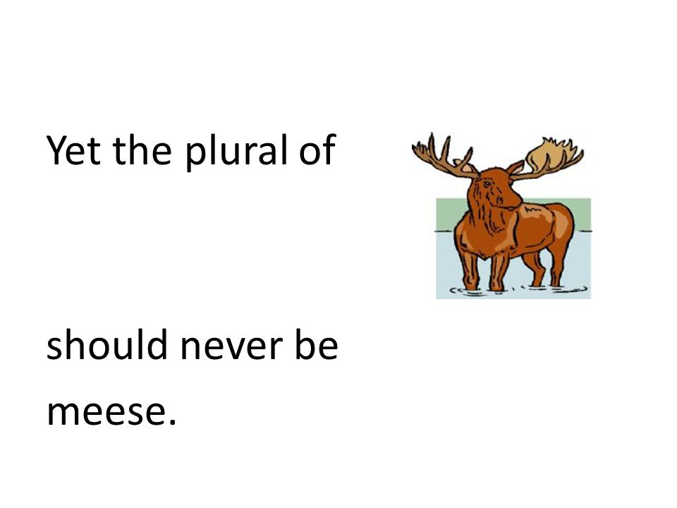 Yet the plural of should never be meese.
