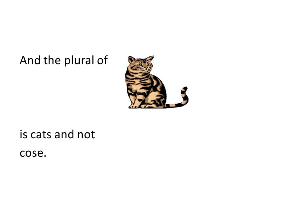 And the plural of is cats and not cose.