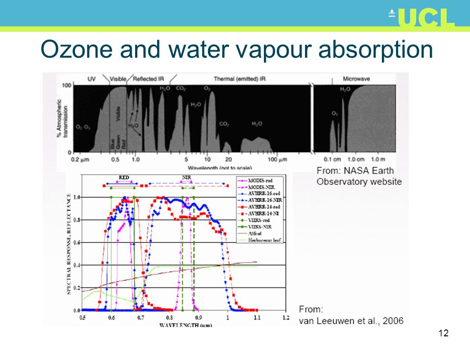 Ozone and water vapour absorption