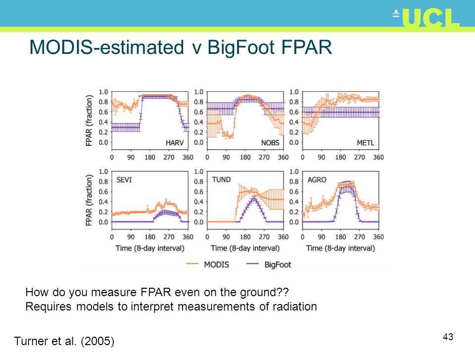 MODIS-estimated v BigFoot FPAR