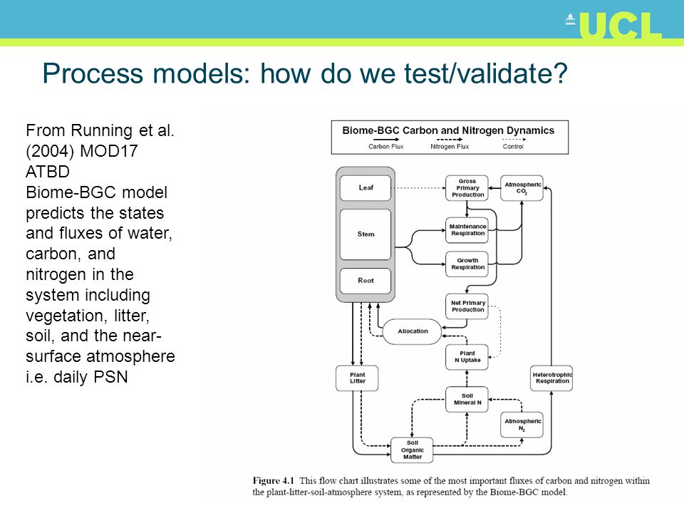 Process models: how do we test/validate