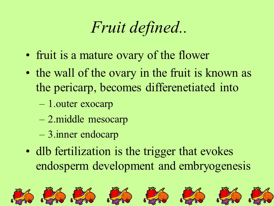 Fruit defined.. fruit is a mature ovary of the flower