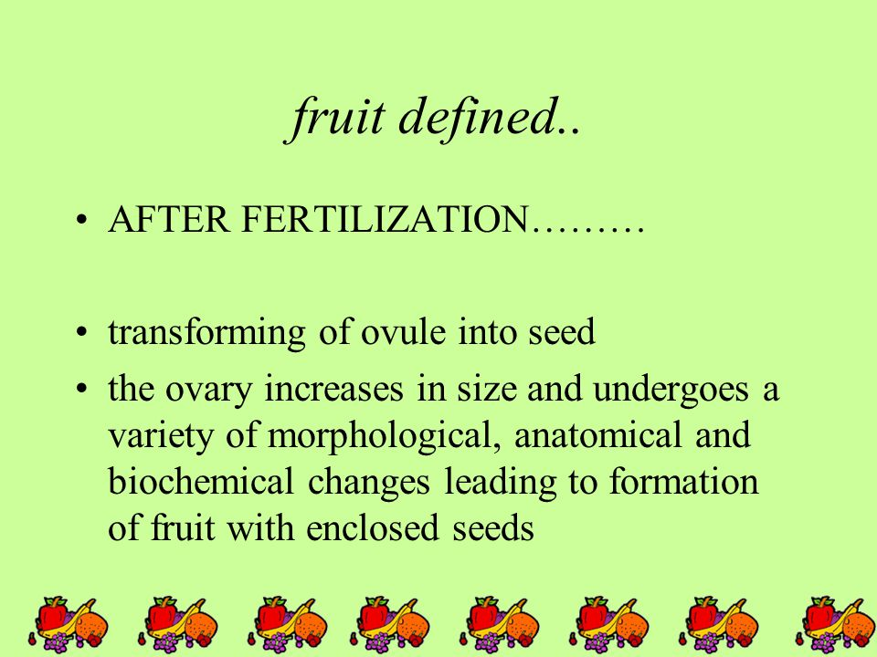 fruit defined.. AFTER FERTILIZATION……… transforming of ovule into seed