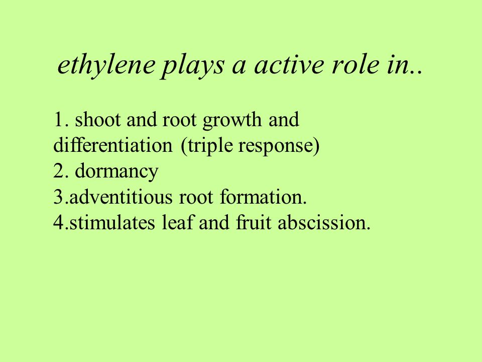 ethylene plays a active role in..