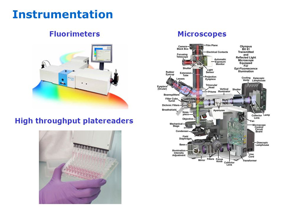 Instrumentation Microscopes Fluorimeters High throughput platereaders
