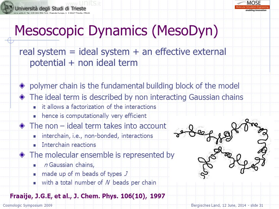 Mesoscopic Dynamics (MesoDyn)
