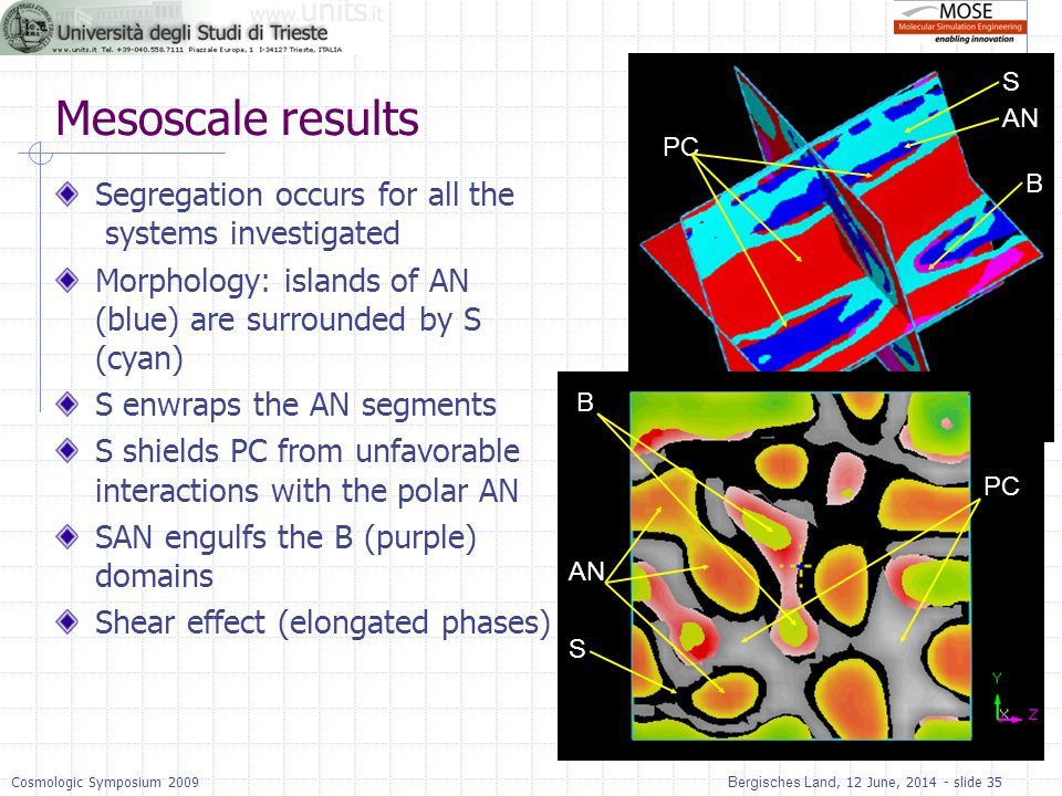 Mesoscale results Segregation occurs for all the systems investigated