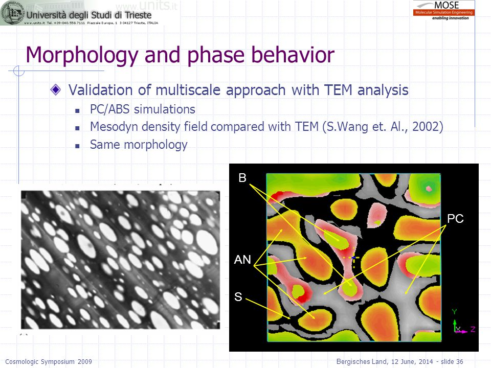 Morphology and phase behavior