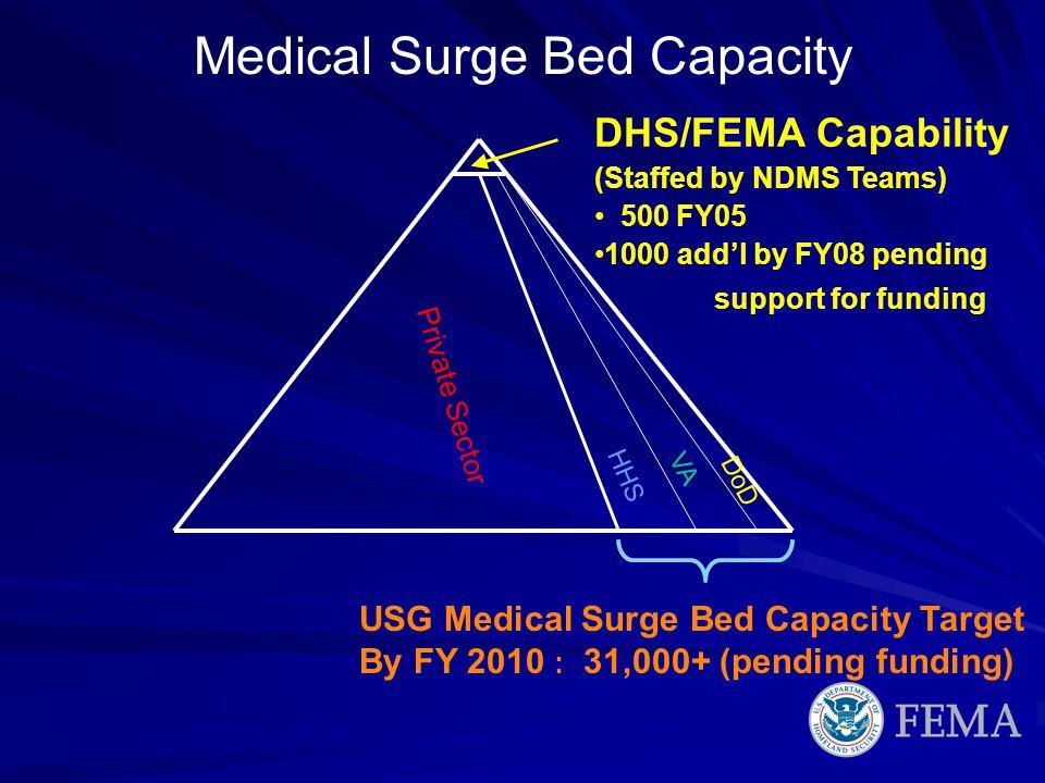 Medical Surge Bed Capacity