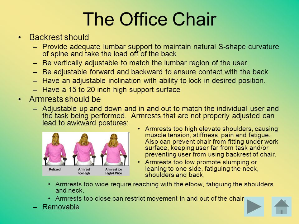 The Office Chair Backrest should Armrests should be
