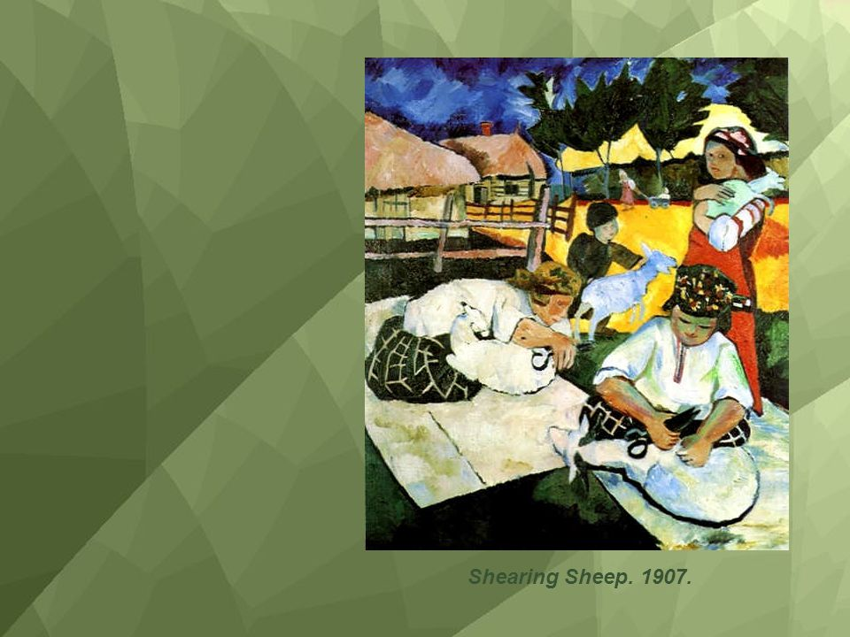 Shearing Sheep. 1907.