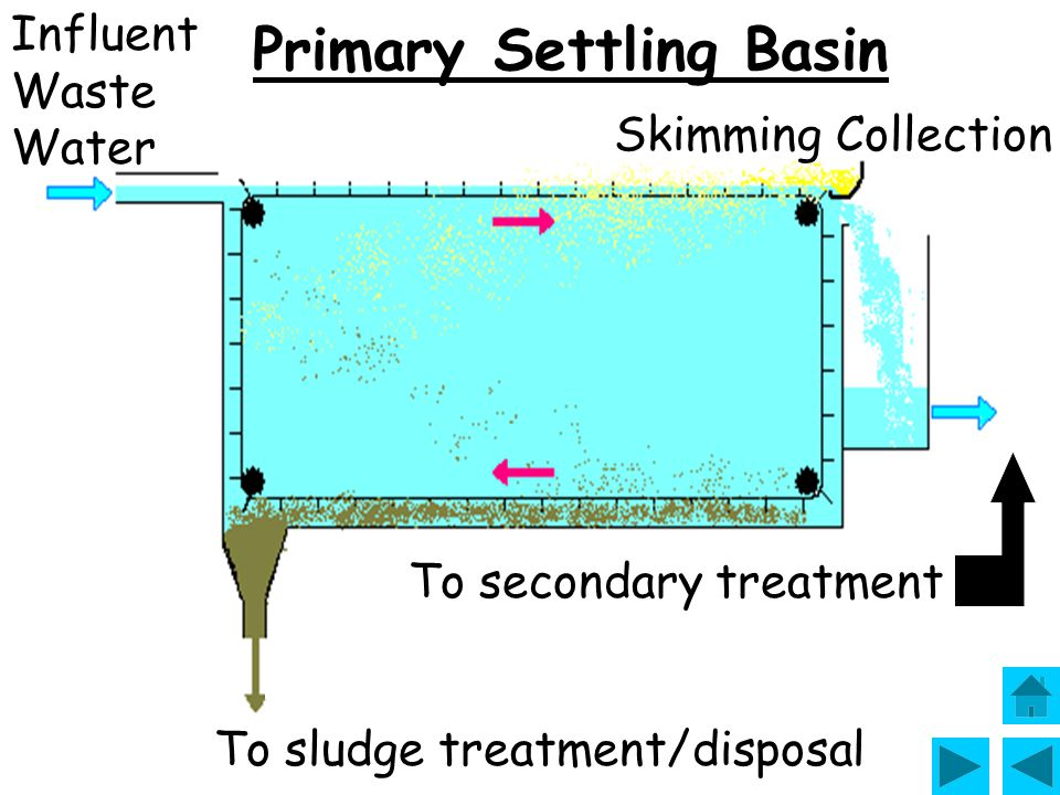 Primary Settling Basin