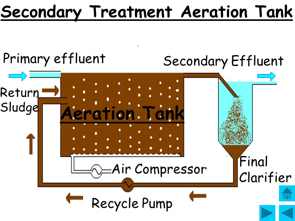 Aeration Tank Secondary Treatment Aeration Tank Primary effluent