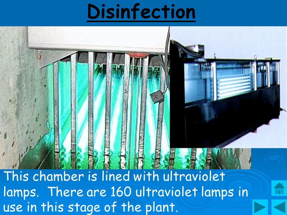 Disinfection UV Sterilizer.