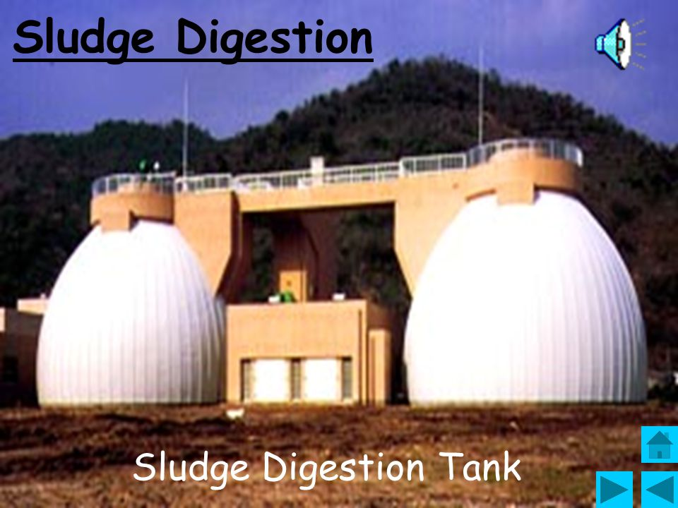 Sludge Digestion Sludge Digestion Tank