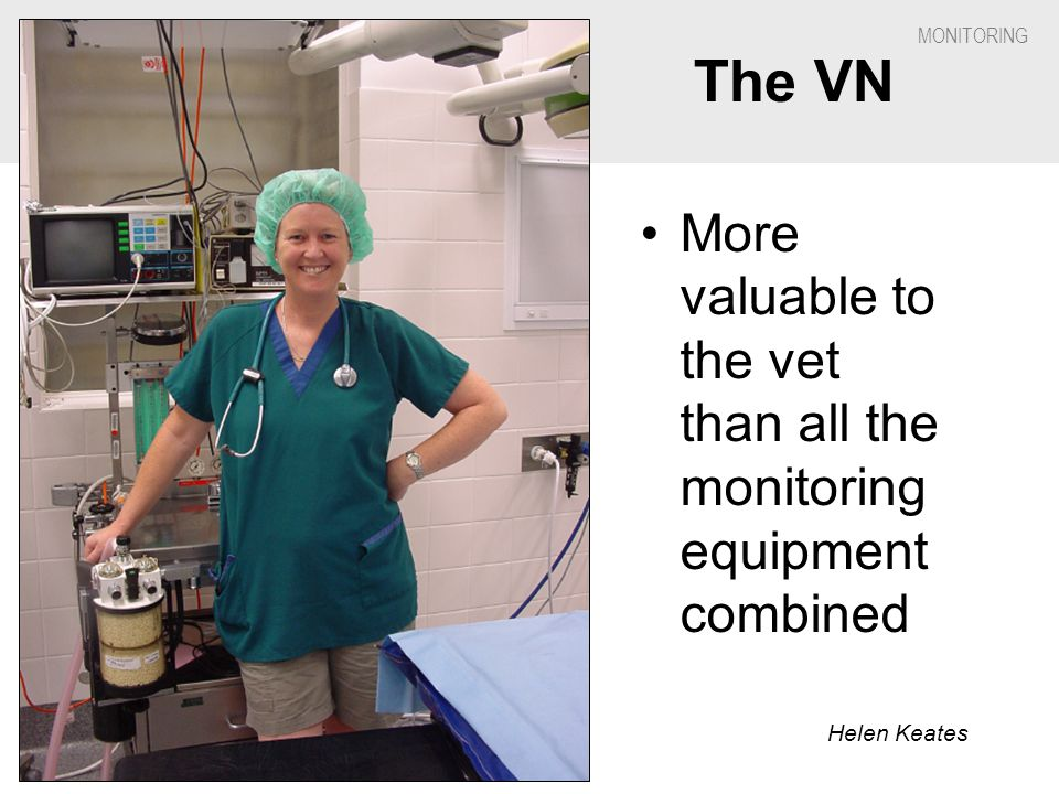 The VN More valuable to the vet than all the monitoring equipment combined Helen Keates # I * 5 *